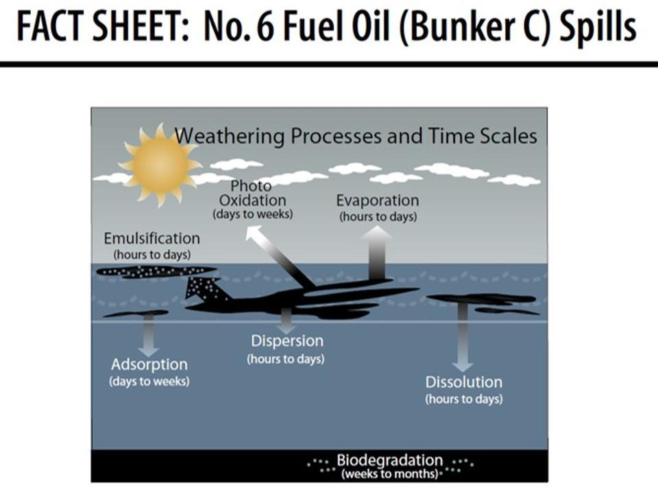 NOAA fact sheet