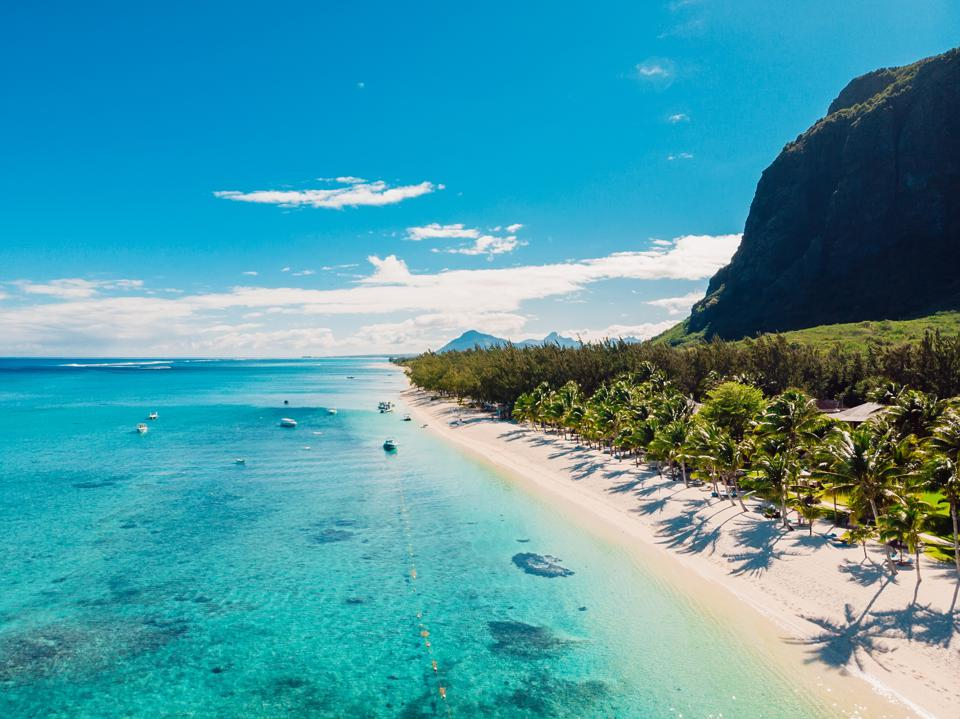 Luxury beach with mountain in Mauritius. Sandy beach with palms and blue ocean. Aerial view