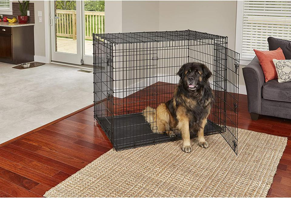 12 Of The Best Dog Crates For Every Pup According To Pet Owners