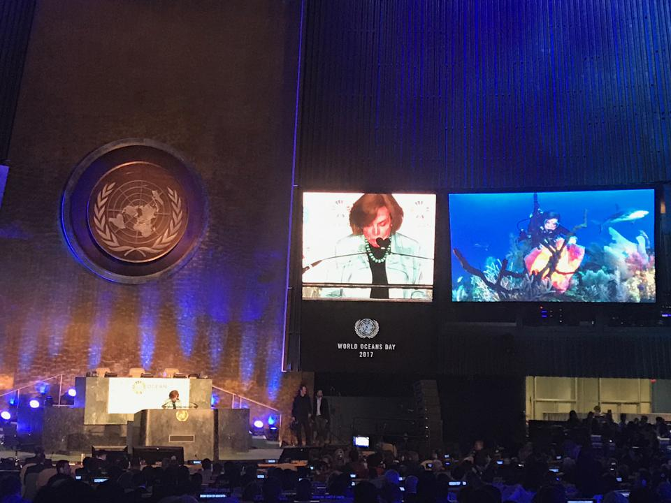 Ocean Elder Sylvia Earle, addressing the UN General Assembly on World Oceans Day 2017