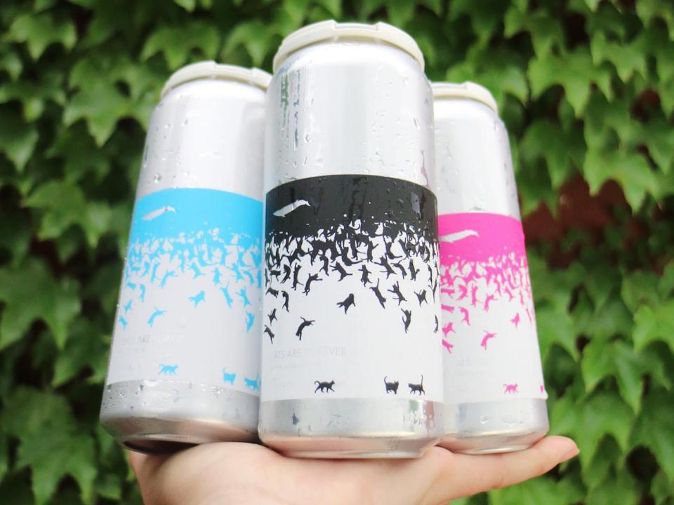 Cans of beer from Finback Brewery