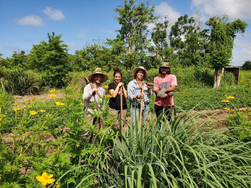 Güakiá Colectivo Agroecológico