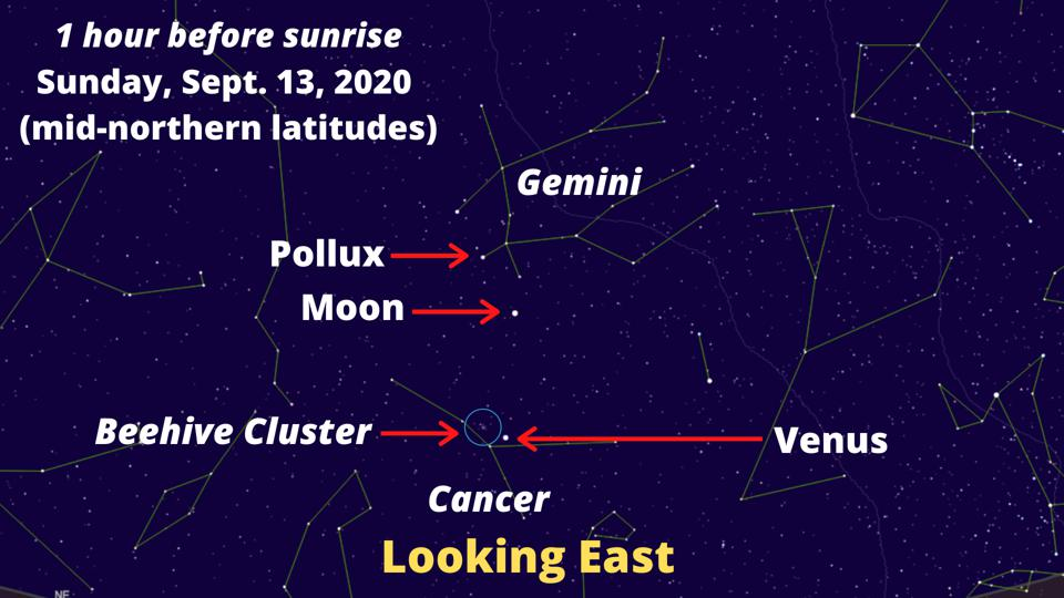 The crescent Moon will be above Venus and the Beehive Cluster on the morning of Sunday, September 13, 2020.