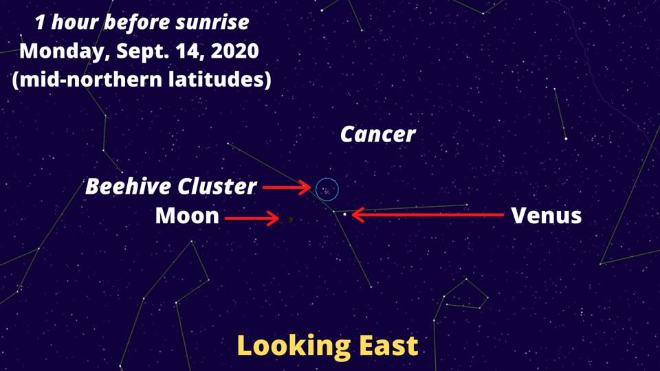 The crescent Moon will join Venus and the Beehive Cluster on the morning of Monday, September 14, 2020.
