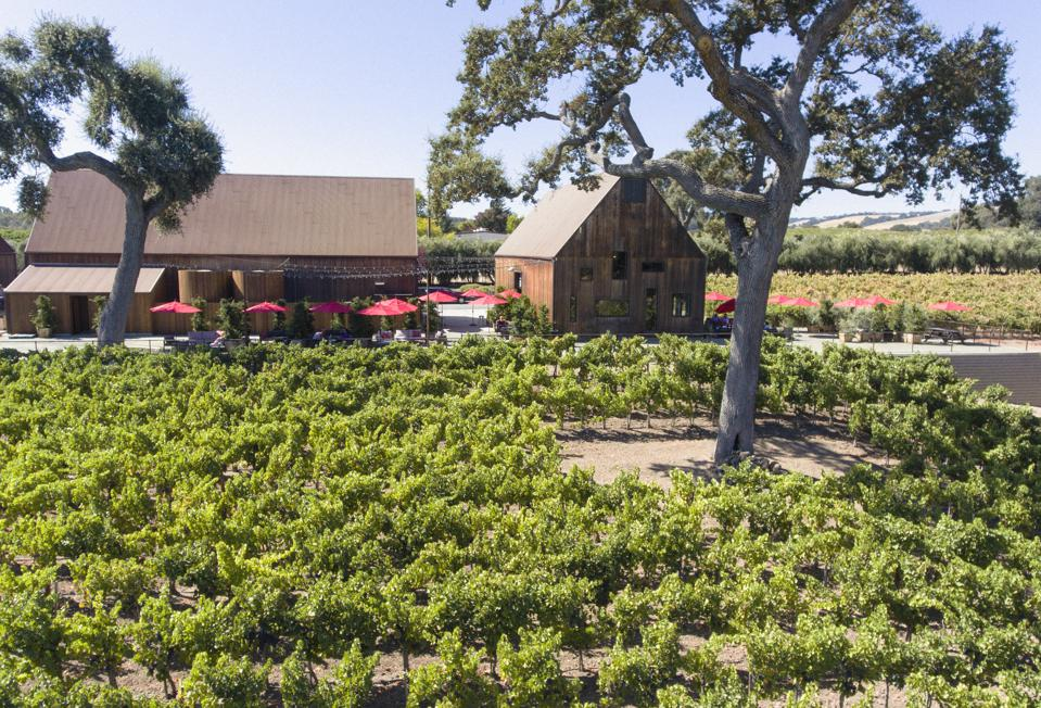 Hope Family Wines in Paso Robles, California, produces five brands: Austin Hope, Liberty School, Treana, Quest and Troublemaker.