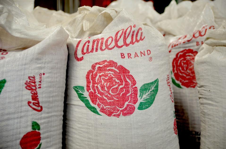 Large sacks of Camellia beans.