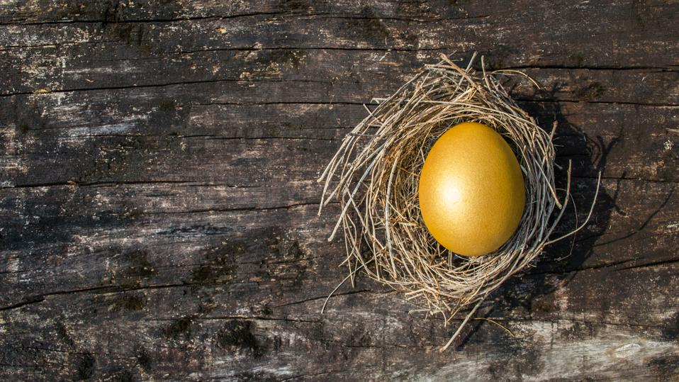 A golden egg opportunity concept of wealth and a chance to be rich