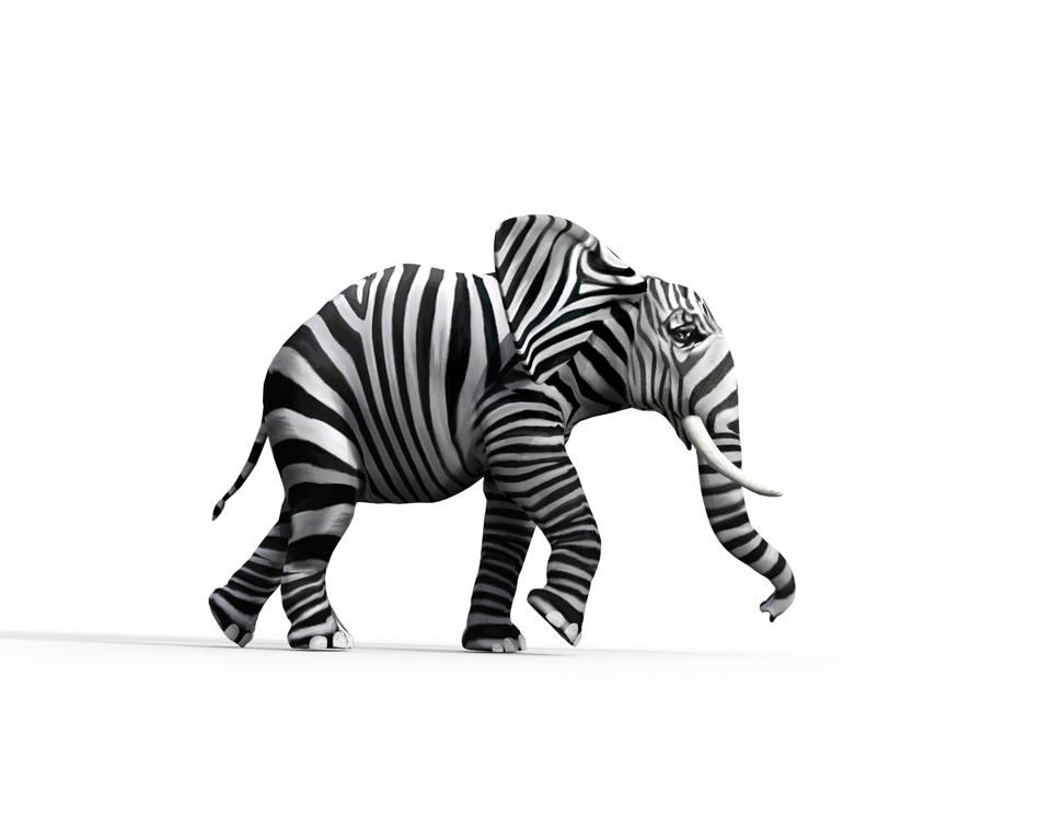 Elephant with zebra skin in the studio. The concept of being different. 3d render illustration