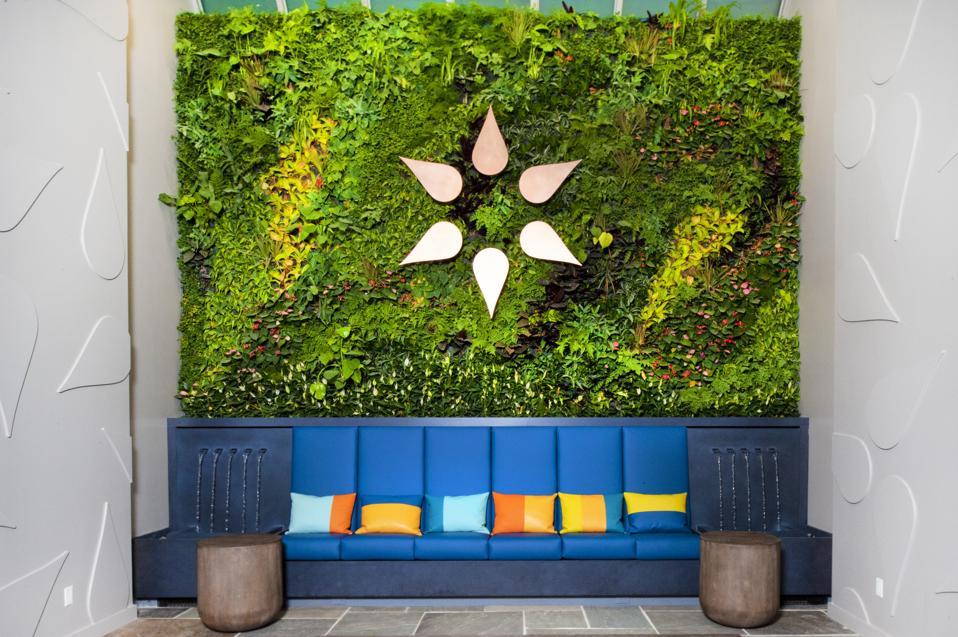 Etain Health Manhattan Flagship Store green wall and fountains