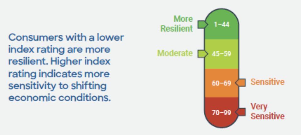 Credit score, credit, FICO Resilience Score, FICO score