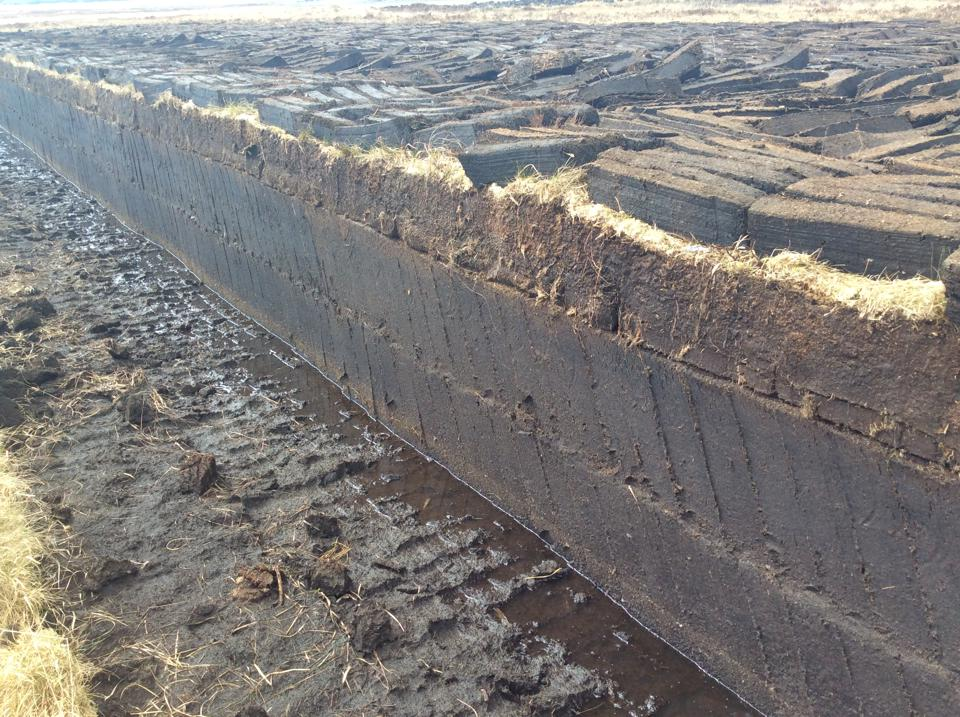A Peat Bog on Islay With Newly Harvested Peat Bricks Drying