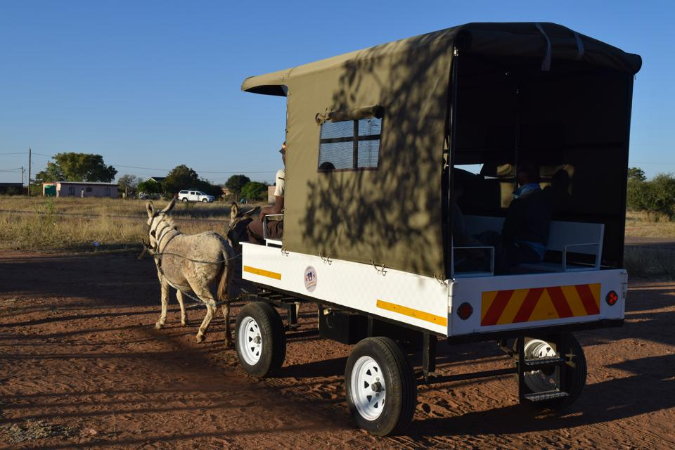A donkey cart with reflective tape in rural Botswana.