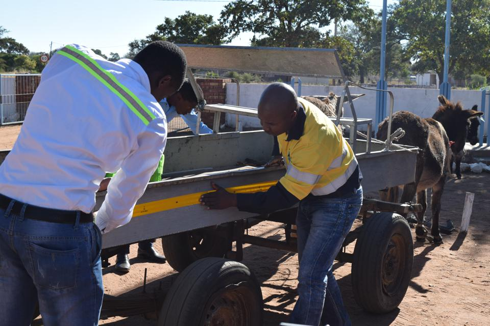 A donkey cart with reflective tape being applied.