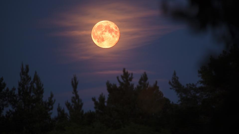 L'aspetto della luna piena è uno spettacolo incredibile.