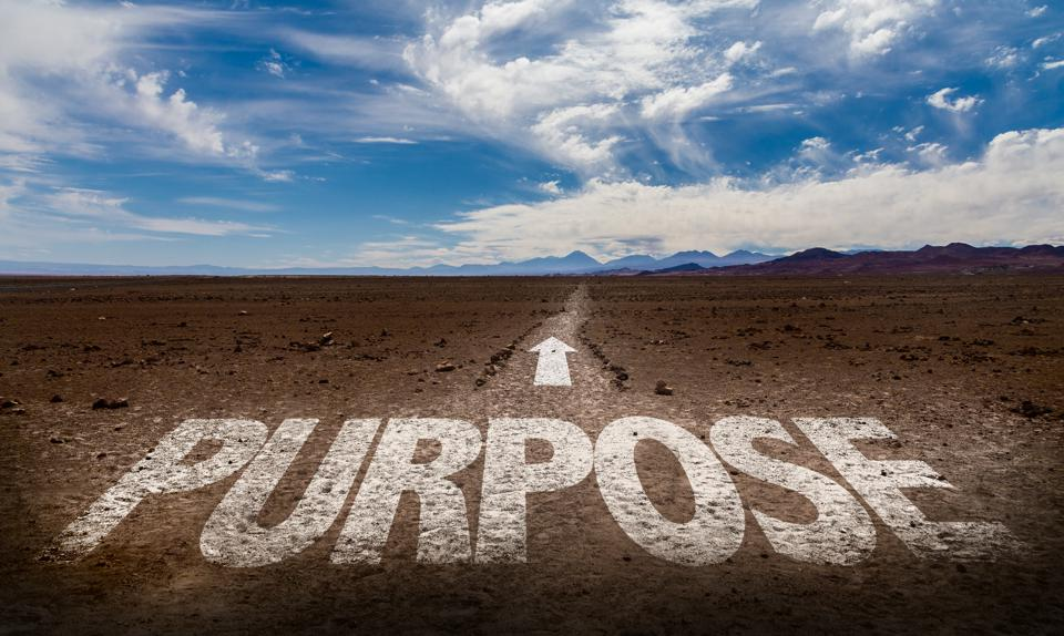 Purpose graphic