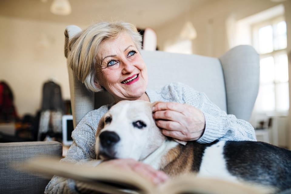 An active senior woman with a dog at home, reading a book.