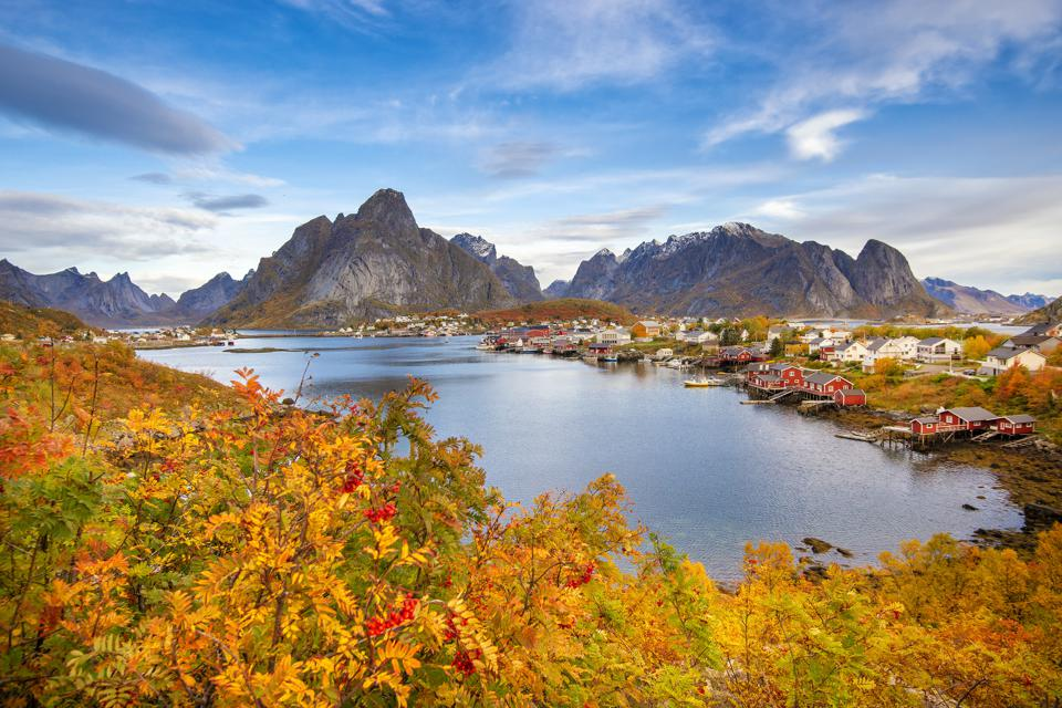 Beautiful colourful view of Reine landscape in Lofoten Islands during the autumn or fall.