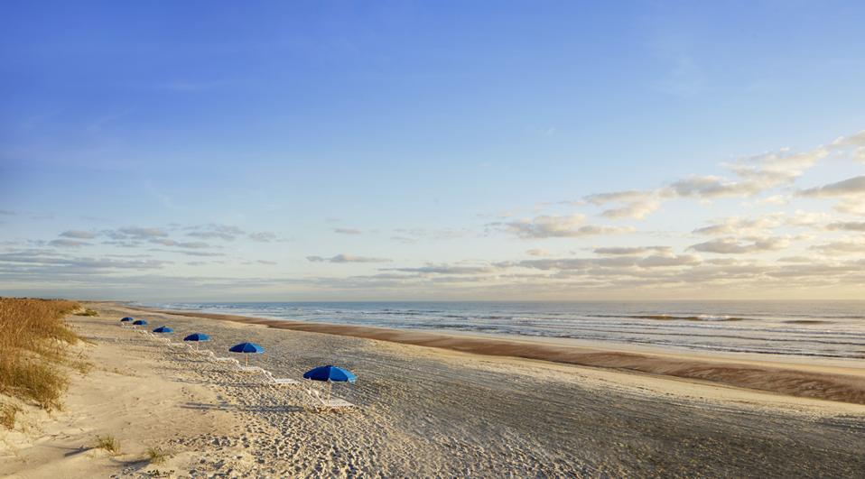 A long stretch of beach with beach umbrellas bordering the ocean
