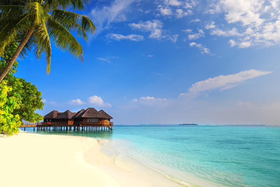 Tropical island with sandy beach, palm trees and overwater bungalow