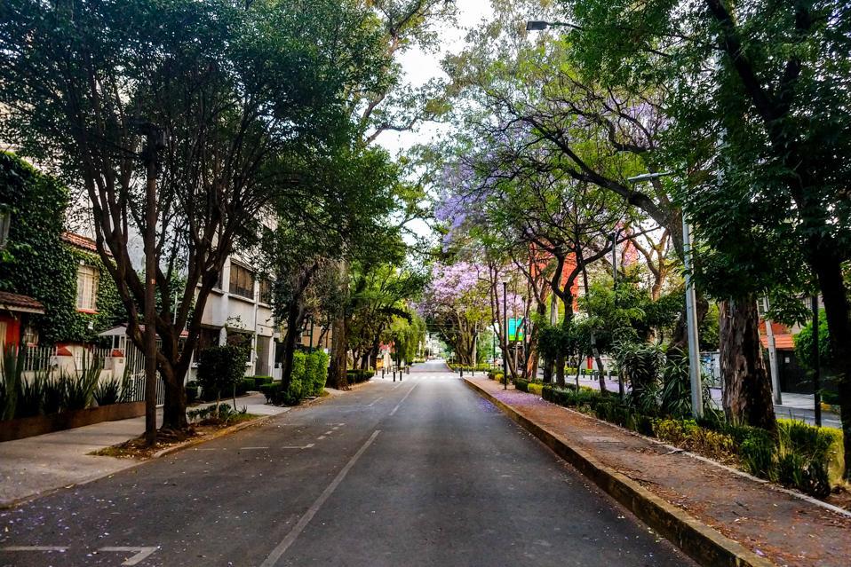 Mexico City landscapes
