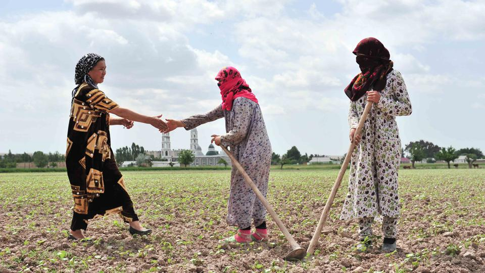 The head of a water user association meets female irrigators to discuss water requirements in Tajikistan