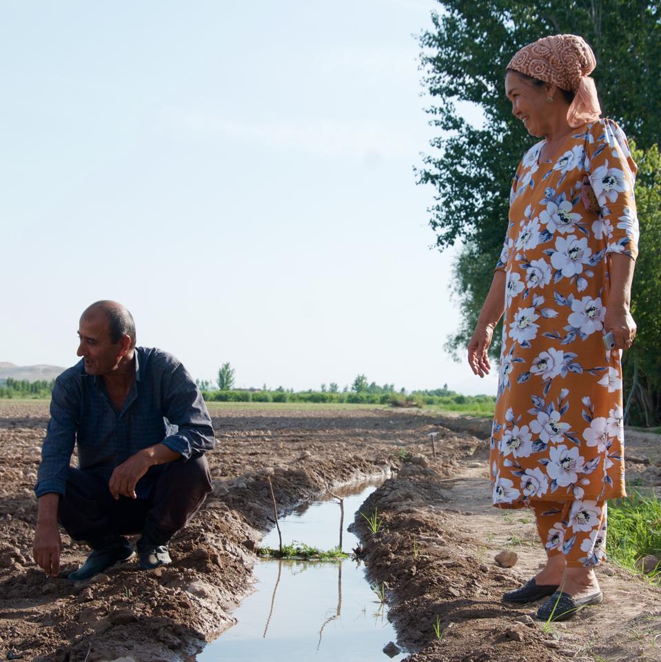 Working on farms in rural Tajikistan in 2018.