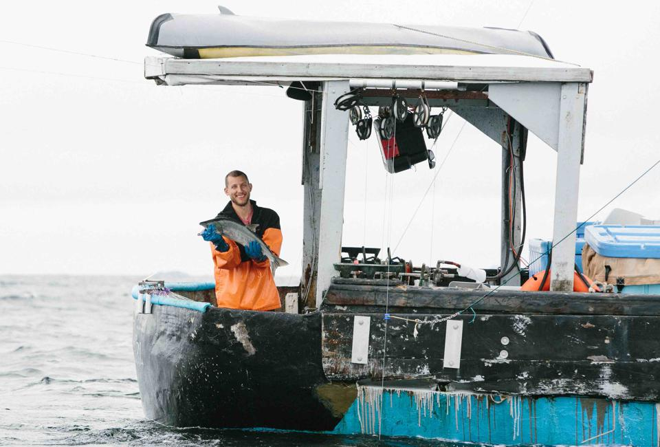 Sitka Shares is an innovative service offering delivery of Alaska seafood.