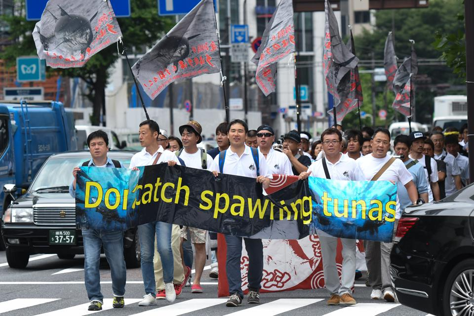 Protest Against Catches of Spawning Tuna