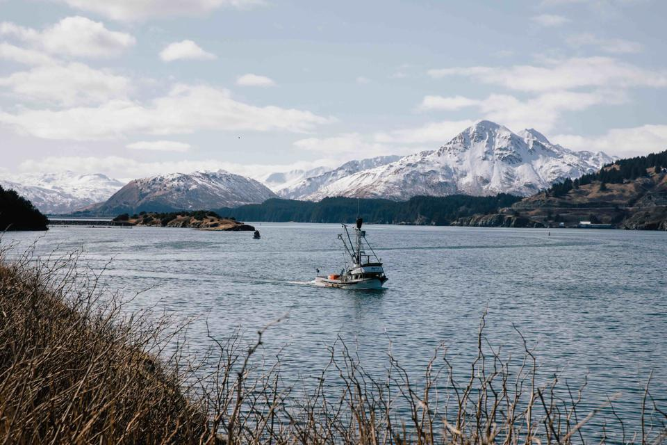 Fishing is an important economic driver of the Alaska economy.