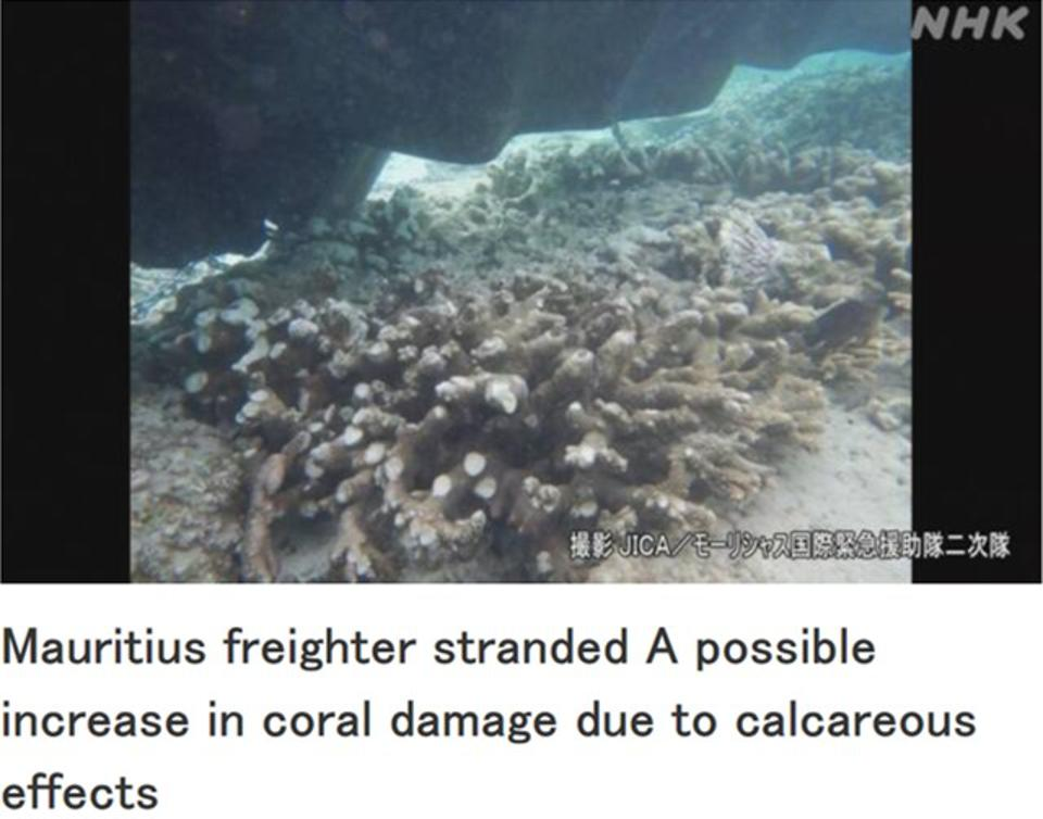 Video from JICA shown on Japanese TV reveal the extent of coral damage due to Wakashio dragging along the reefs and highlights the risk of Calcaereous effects to the 100,000 year old reef system.