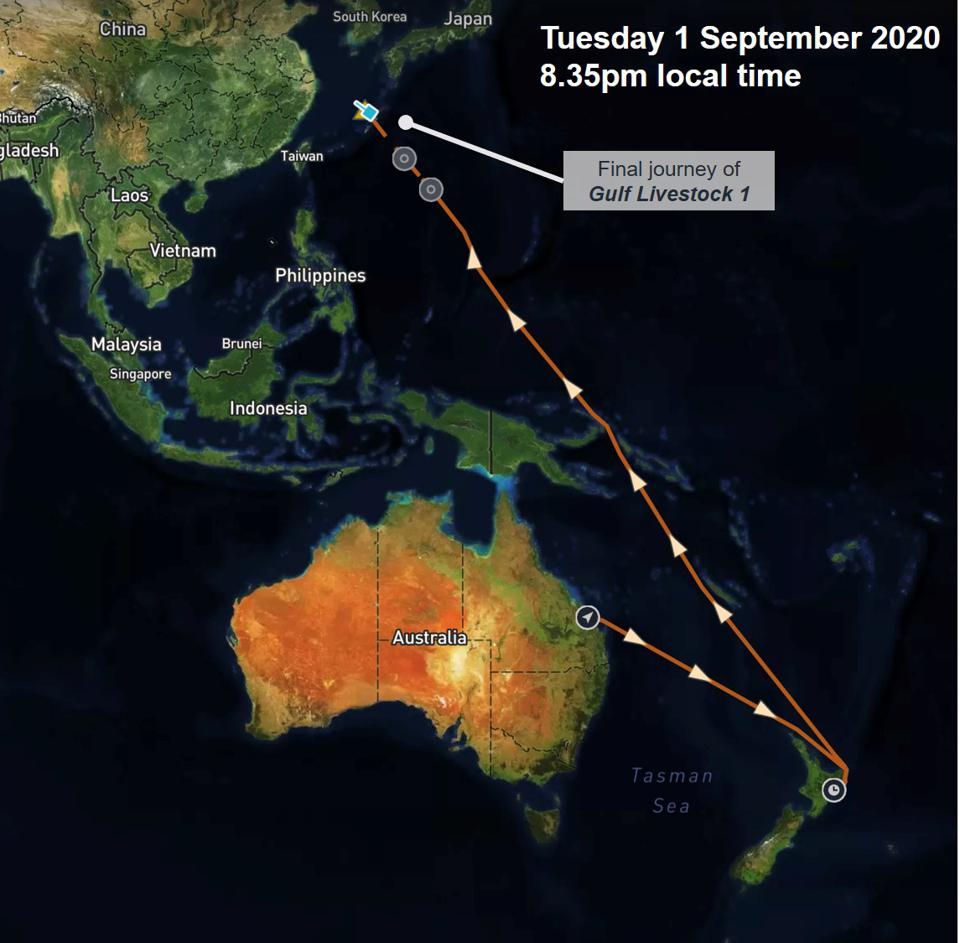 1 September 2020: The last trip for Gulf cattle from 1 to New Zealand to take 6000 cattle and then to China can be seen by satellite tracking