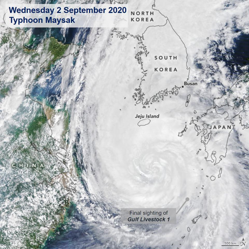 2 September 2020: Typhoon Mayesak reached the strength of a Category 4 hurricane overnight on 1 September 2020, as livestock from the Gulf were going into the eye of the storm.