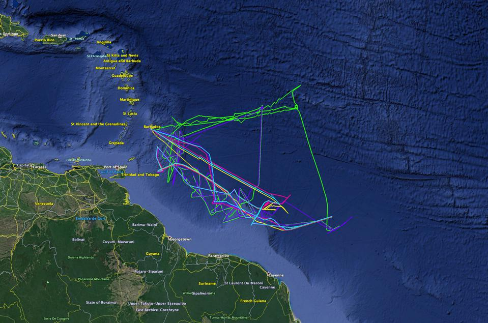 Autonomous scientific vessels from Saildrone have also been used along coastal regions to track coral and fish spawning behavior, as seen here around the Caribbean.