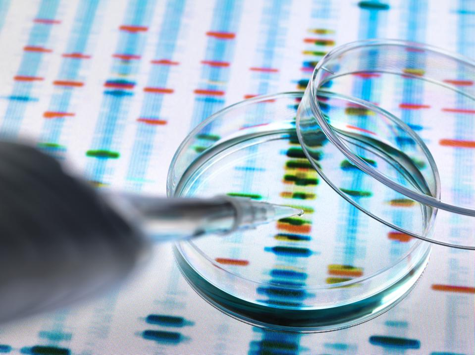 Sample of DNA being pipetted into a petri dish over genetic results
