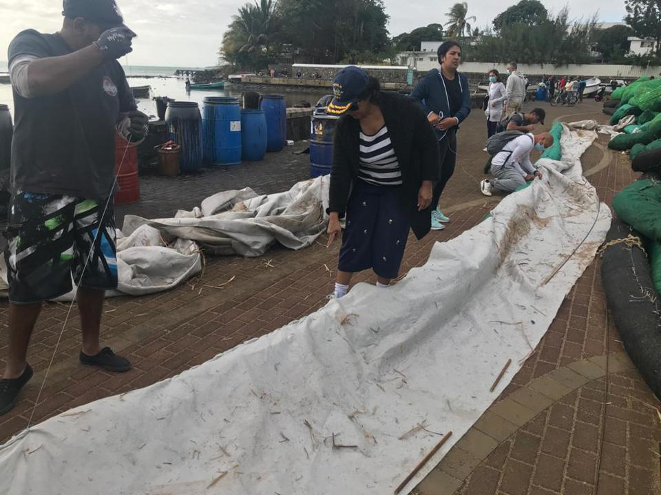 Ameenah at Mahebourg Waterfront where large volunteer army stitched together home made artisanal booms made from sugar cane leaves.