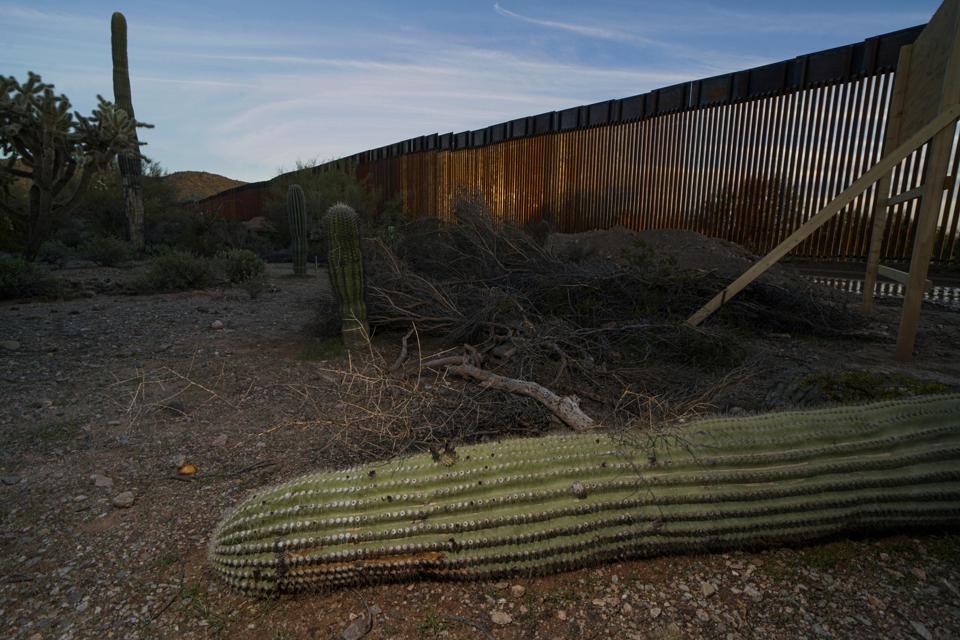 Importance of wildlife conservation - US-MEXICO-BORDER-IMMIGRATION-ENVIRONMENT