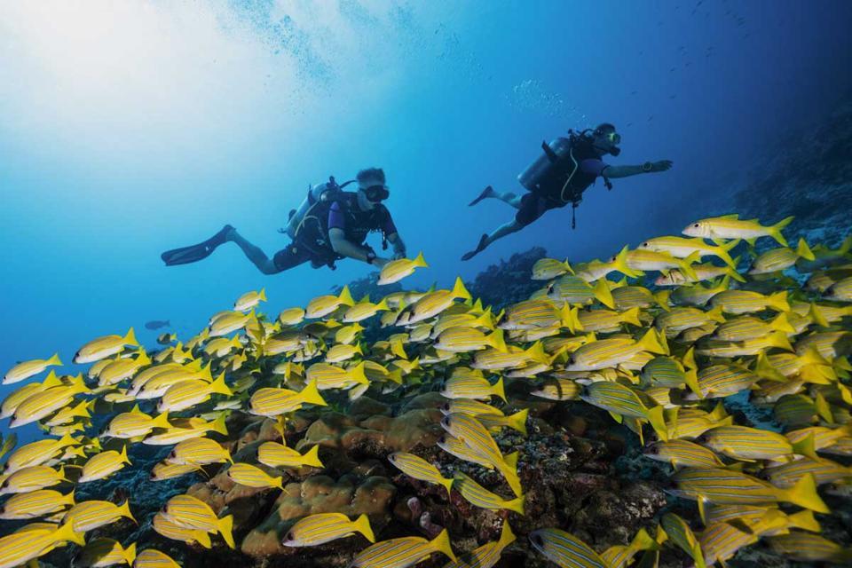 Snorkeling at One&Only Reethi Rah resort