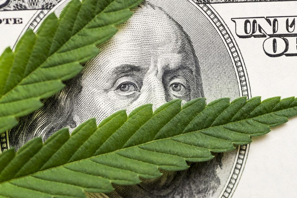 Leaf of marijuana in cash hundred dollar bills. A sheet of marijuana for money, dollars and cannabis, a legal and black market business