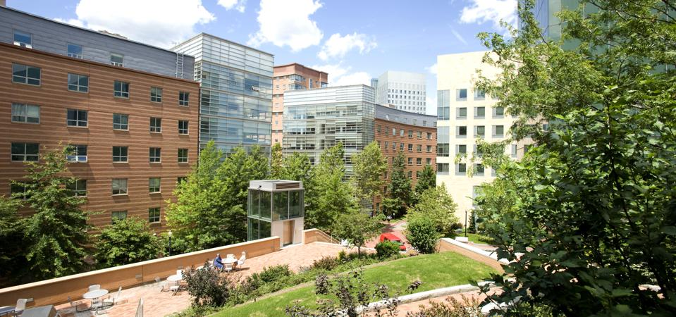 This is a photo of Northeastern University campus.