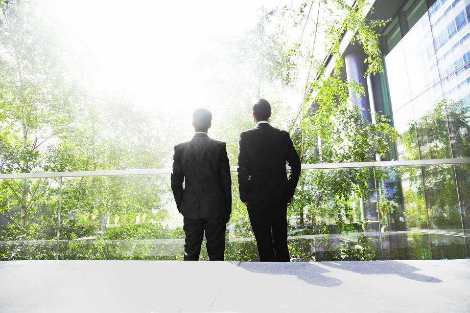 Two businessmen surrounded by trees.