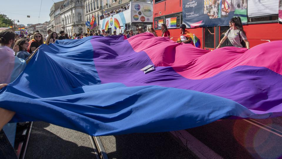Bi pride flag learn ally bisexual bi+ bisexual+ pansexual people