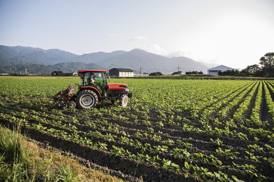 How To Break Free From The 'Pesticide Treadmill'