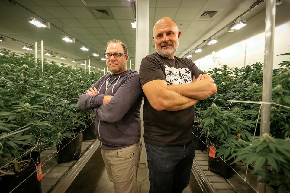 CEO and President in the grow