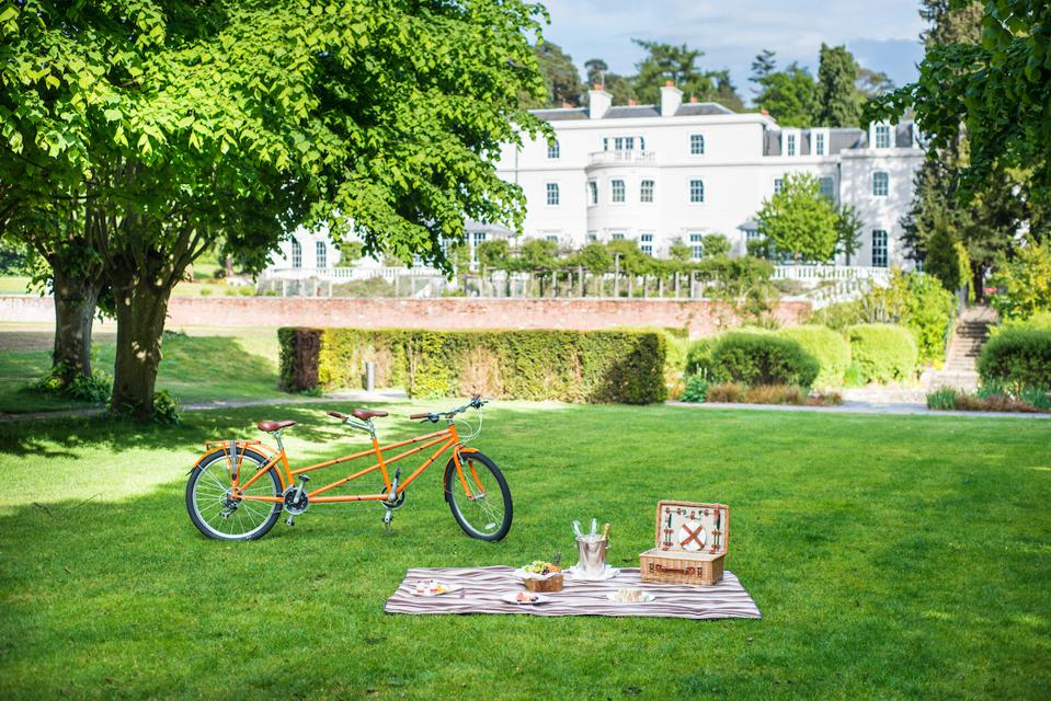 picnic on grass, house in background, bike
