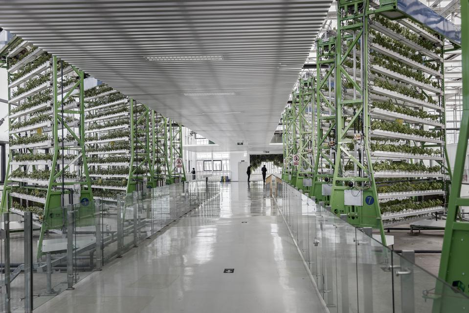 COFCO vertical farming