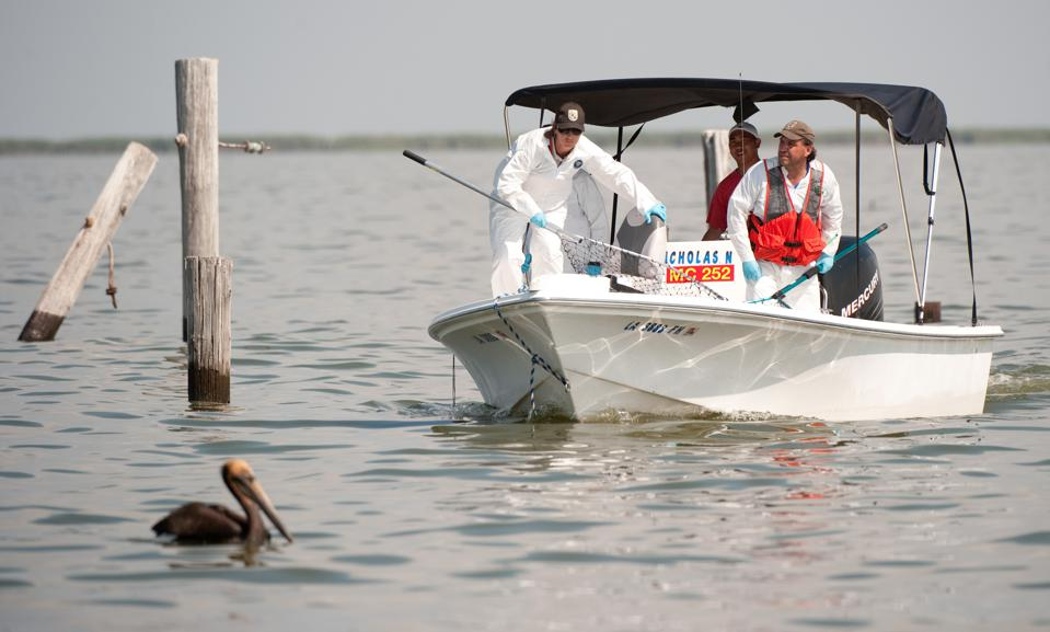 A team of biologists from the US Fish an