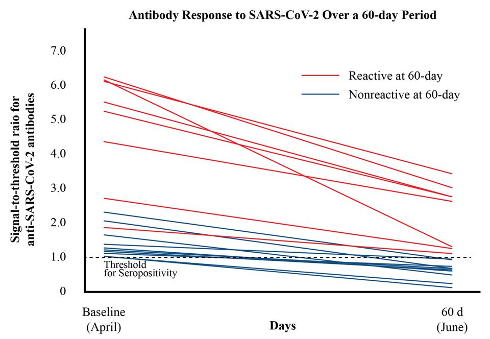 A chart tracking decline in antibody levels.