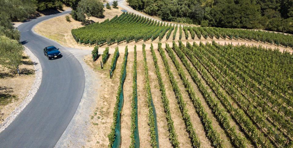 car driving through Napa wine country vineyard