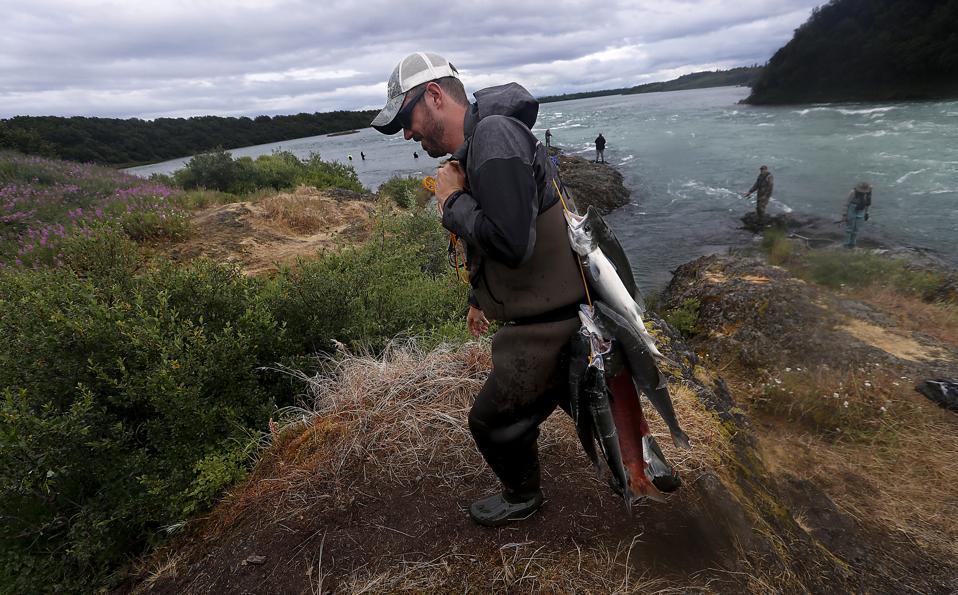 Alaska environmental stories