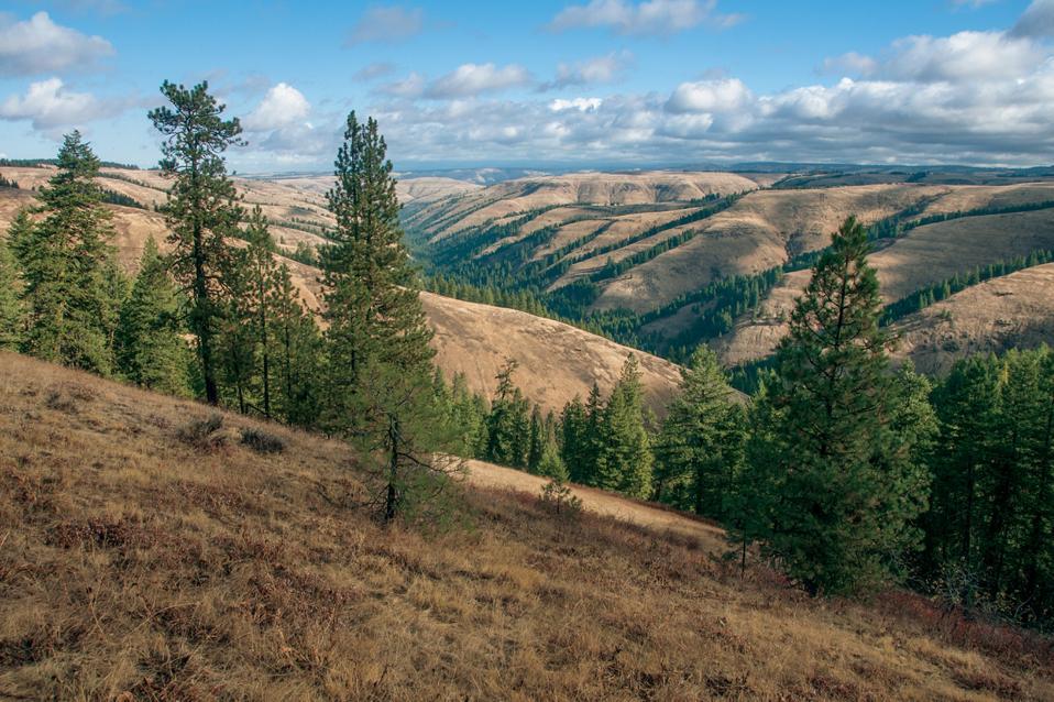 Oregon Trail, America's National Historic Trails, Rizzoli